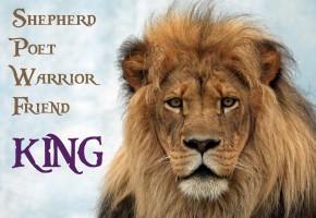The Life of David: Shepherd. Poet. Warrior. Friend. KING.